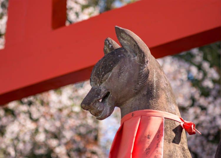 京都觀光禮節3:神社佛寺篇