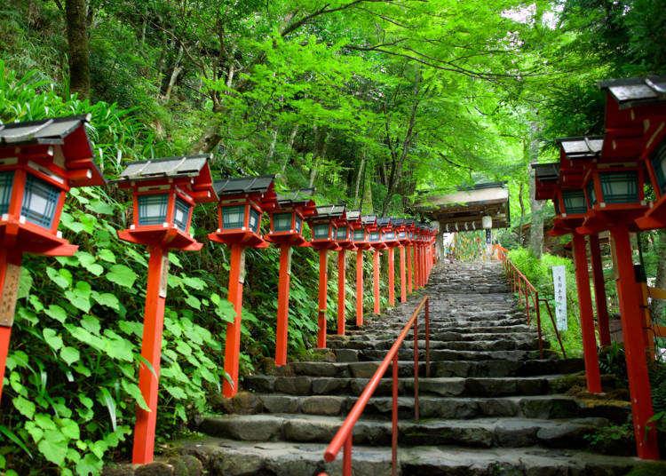 関西国際空港から京都までの交通ガイド。電車、バス、車どれで行くのが便利?