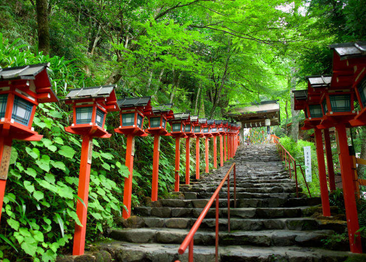 From Kansai Airport to Kyoto: Guide to the Easiest Options (With Discount Tickets)