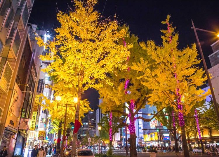 ■오사카 시내의 11월 날씨