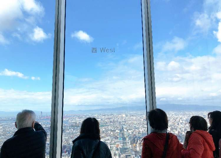 MUJI Café and Crazy Osaka Views?! What to do in Japan's Tallest Building