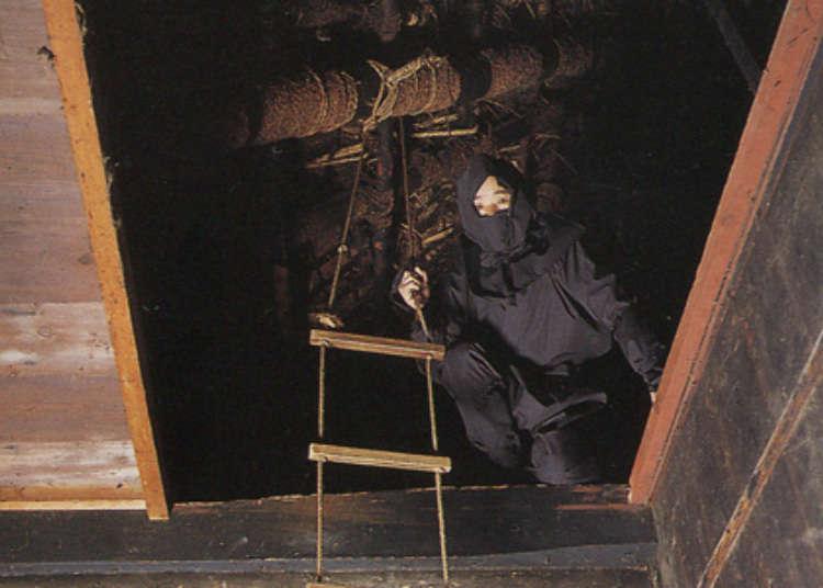 일본 닌자의 고장 고카시의 고카류 닌쥬츠야시키(닌자저택)'에서 닌자체험을 즐기다