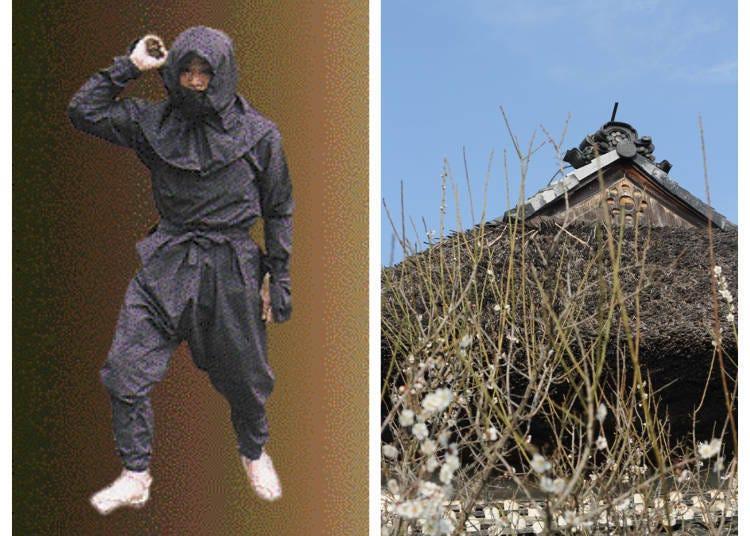 Koka - Japan's ninja village