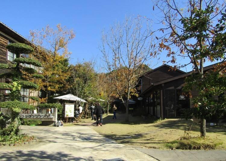 More fun at Akizuno Garten