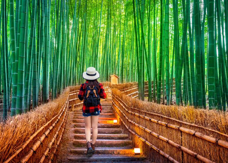 京都旅遊前必看!夏天6月、7月、8月的天氣資訊、服裝穿搭建議