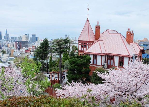 兵庫県神戸市の春(3月・4月・5月)の天気と服装まとめ【旅行前に知っておきたい】
