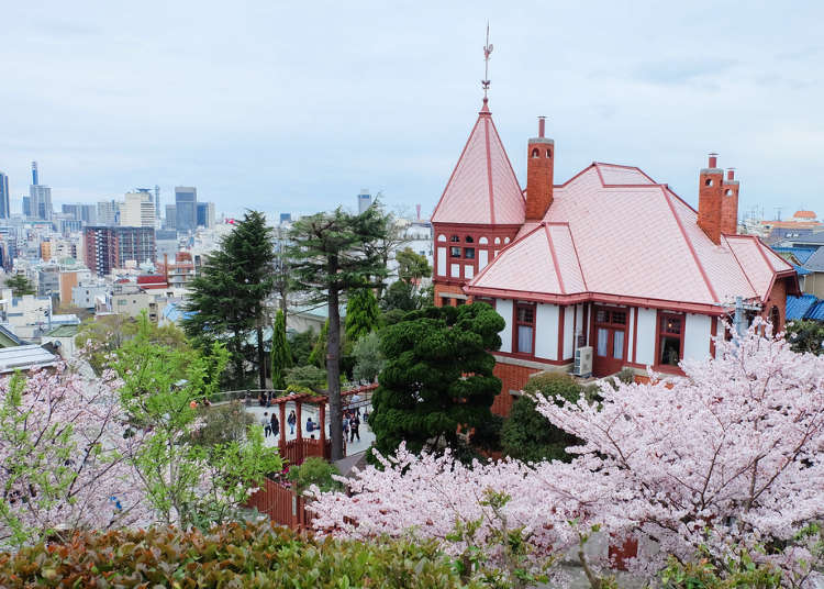 Visiting Kobe in Spring 2021: Ultimate Guide to Kobe Weather in Spring and Clothes You Need!