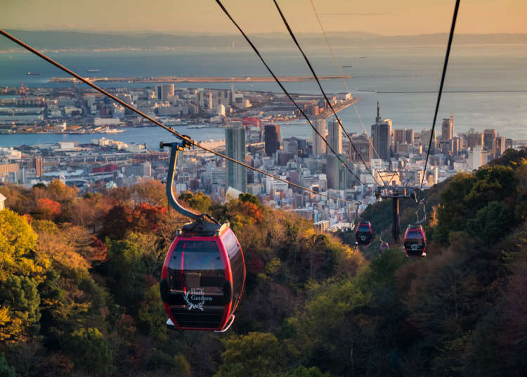 Visiting Kobe in Autumn: Ultimate Guide to Kobe Weather in Fall and Clothes You Need!