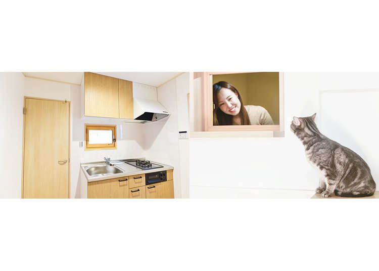 New cat-friendly homes in Japan come specially designed for felines