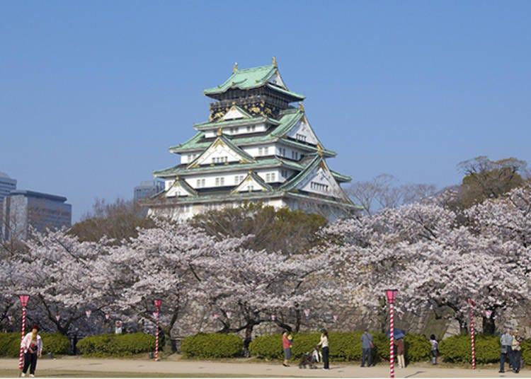 1. Osaka Castle: Hideyoshi's beloved cherry blossoms
