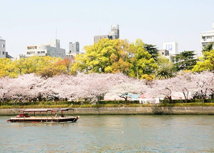4. Kema Sakuranomiya Park and Osaka's waterways