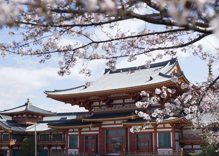 5. Nenpo Shinkyo Kongo Temple: Surrounded by cherry blossoms