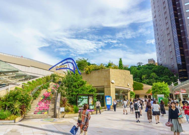 Nankai Airport Line: Namba Station