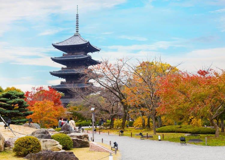 Q:想進行寺廟巡禮,該選大阪還是京都?
