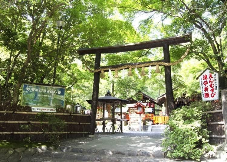 京都嵐山腳踏車之旅景點⑤四周環繞著嵯峨竹林的結縁之神「野宮神社」
