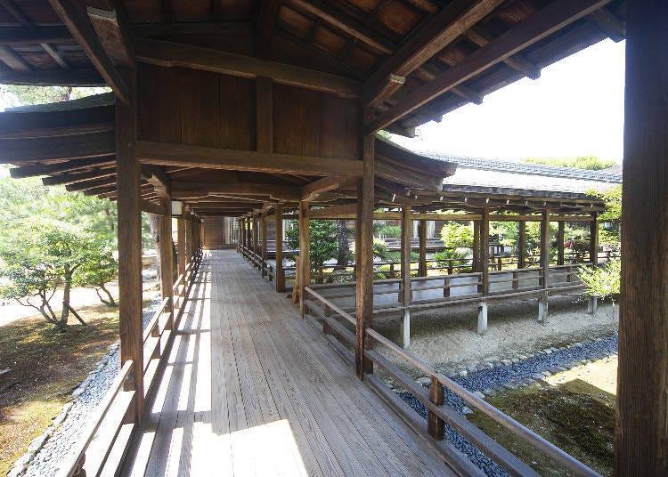 京都嵐山腳踏車之旅景點⑧蘊含1200年以上歷史的絕美寺廟「舊嵯峨御所 大本山 大覺寺」