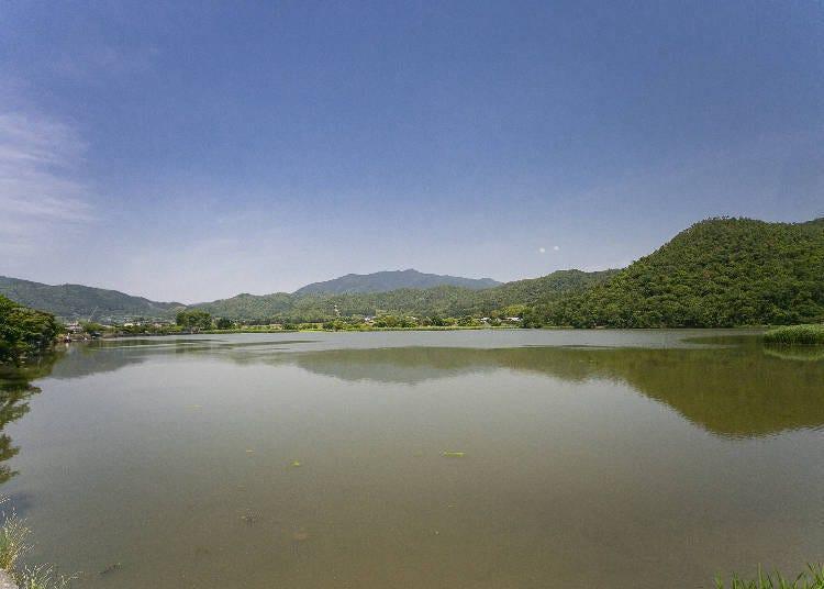 步行或公車所無法欣賞到的景色!來趟京都腳踏車之旅吧!