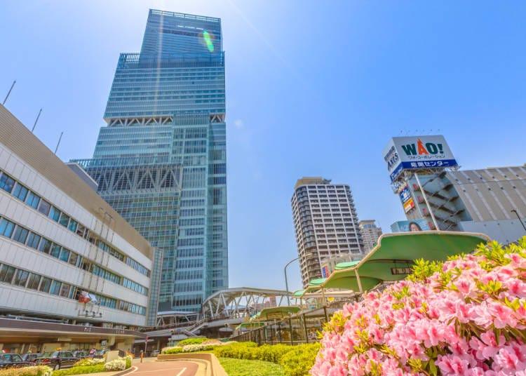 3.【阿倍野】大阪の街を見下ろす超高層ビル「あべのハルカス」の屋外庭園