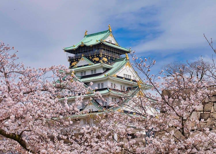 5. 오사카 성과 3,000그루의 벚나무가 아름다움을 겨루는 '오사카 성 공원'