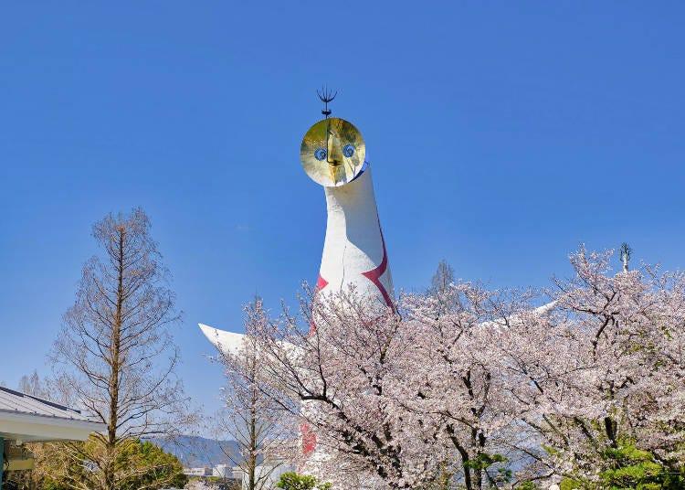 2. 太陽之塔和櫻花的共演「萬博紀念公園」