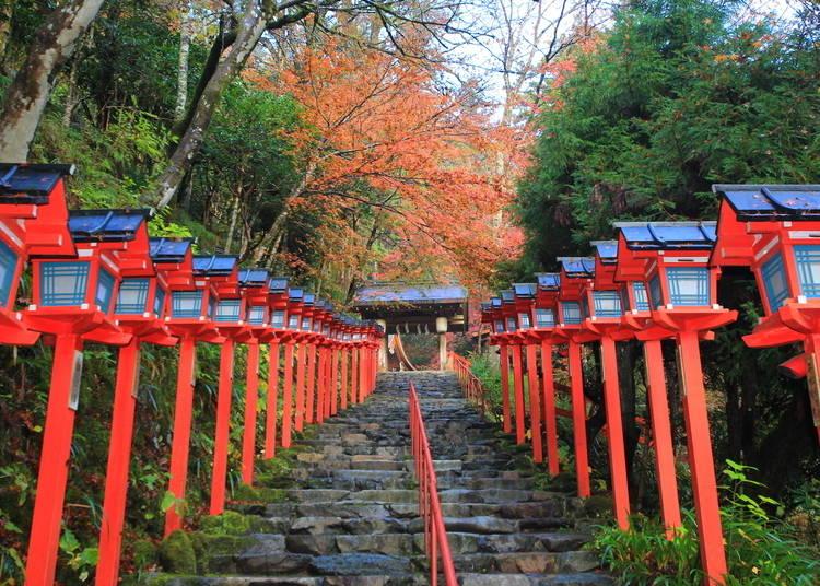 10:ずらりと続く灯篭と紅葉の風景「貴船神社」