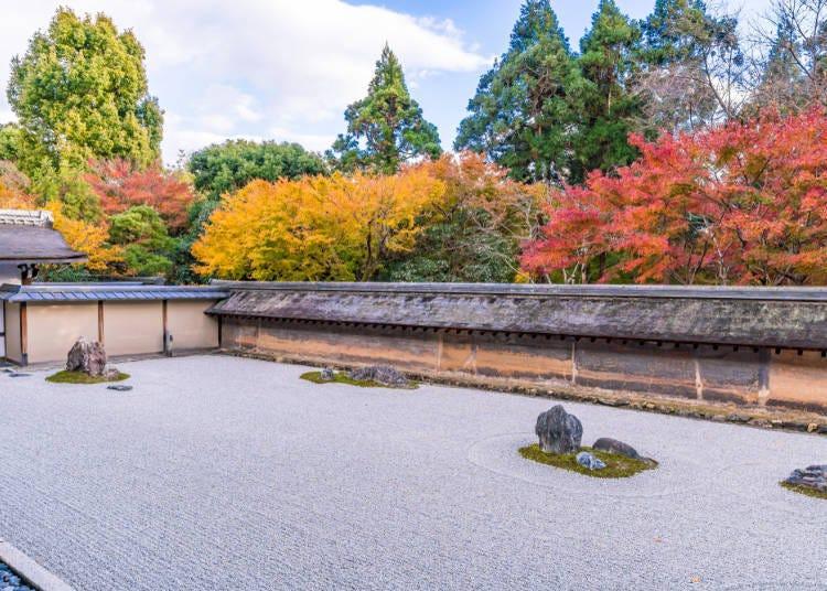 京都赏枫景点⑦枫红完美衬托石庭「龙安寺」