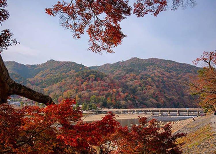 京都賞楓景點⑧自然漸層鬼斧神工「嵐山」