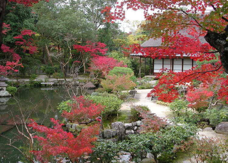 2. Isui-en – Fall in Love with the Foliage at Two Different Gardens!