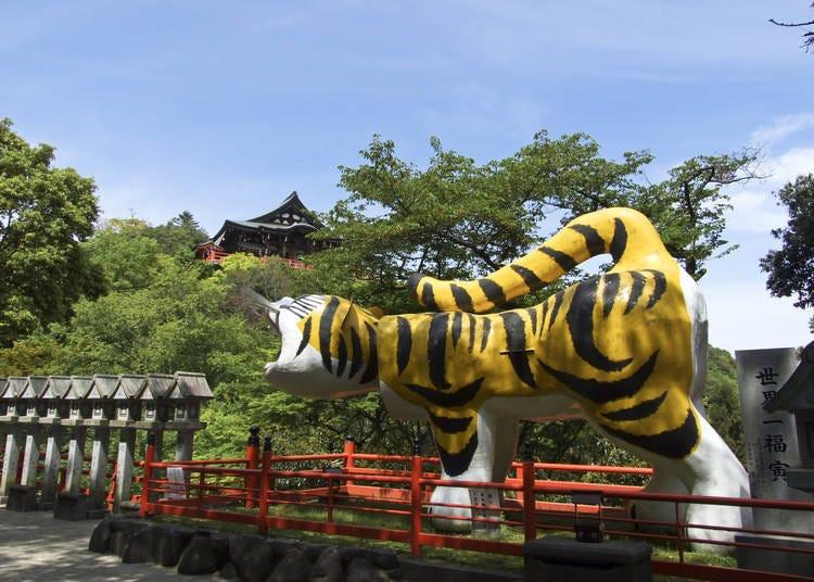 9. Chogosonshi-ji Temple – Vivid Reds Transform This Deeply Historic Mountain