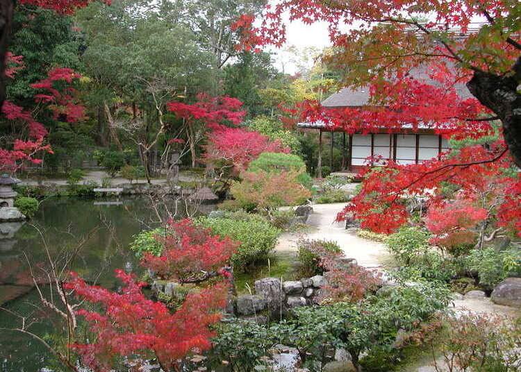 2:「依水園」では2庭園で紅葉を愛でる