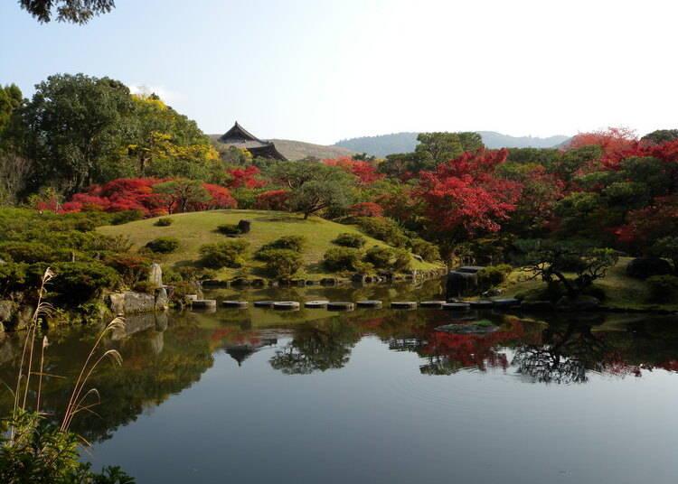 明治時代に作られた「後園」も美しい