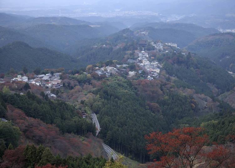 5:サクラの名所「吉野山」は、秋に紅葉の名所に
