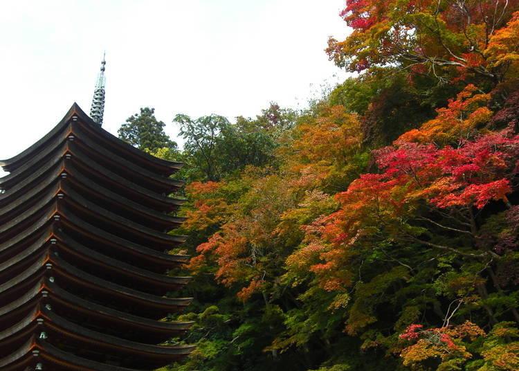 奈良賞楓景點③屈指可數的紅葉名所「談山神社」