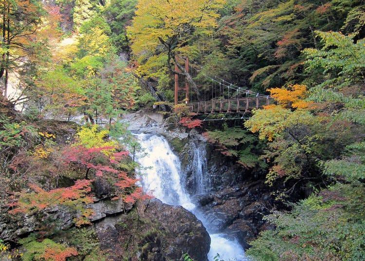 奈良賞楓景點⑩朝氣十足的溪谷充滿魅力「御手洗溪谷」