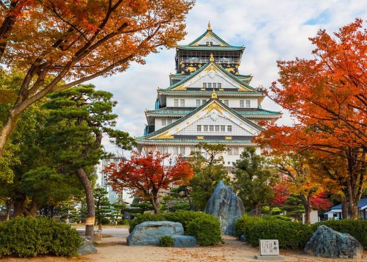 1:天守閣と紅葉を仰ぐ「大阪城公園」