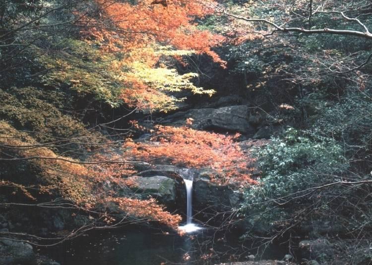 10: 비탕으로 알려진 '이누나키야마 온천'의 단풍