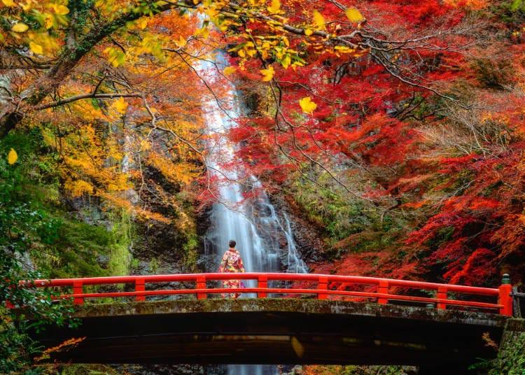 大阪賞楓景點④雄偉瀑布+紅葉「箕面公園」