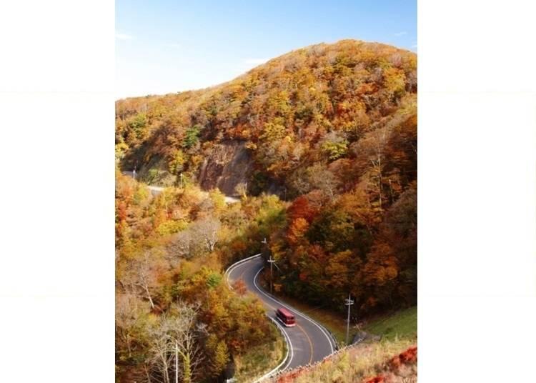 2. Koya-Ryujin Skyline – A Stunning Valley Drive Framed by Foliage!