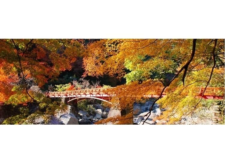 3:ダイナミックな紅葉を楽しむ「奇絶峡」