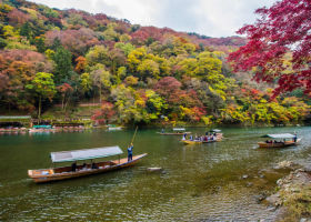 Planning an Autumn Trip to Kyoto? 5 Things to Know Before Packing Your Travel Bag!