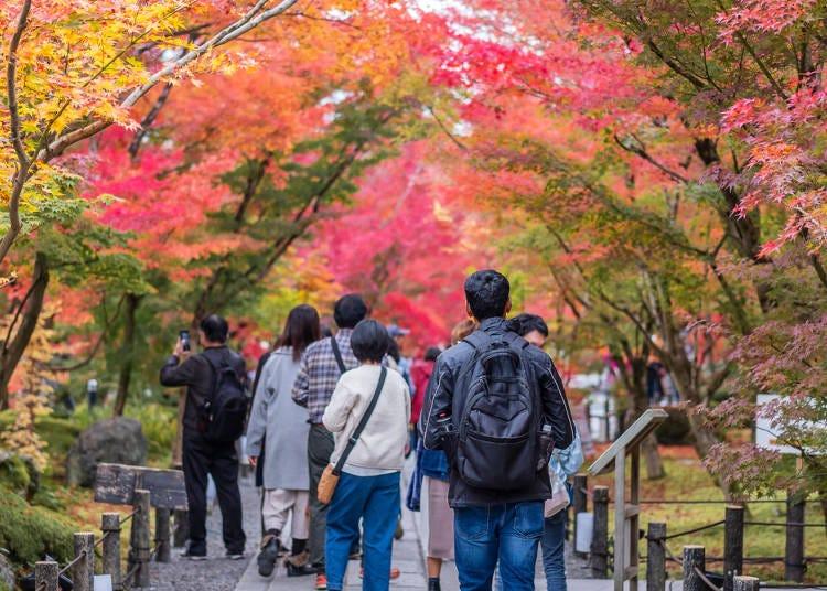 4)観光地は紅葉狩りの人出が多い