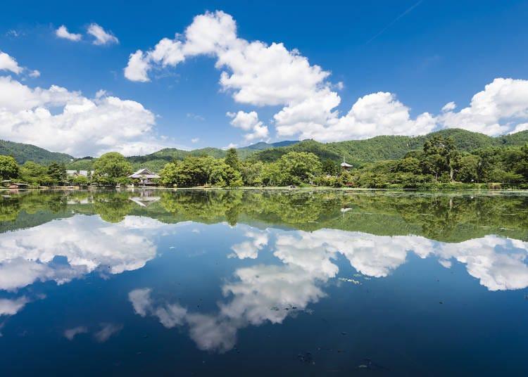13.「大覚寺」で日本最古の庭池の絶景を堪能する