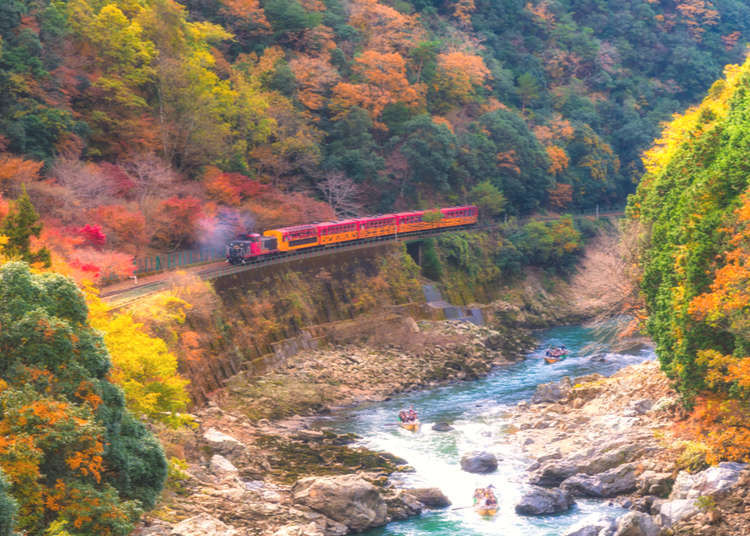 All Aboard the Sagano Romantic Train: Guide to Kyoto's Famous Sightseeing Ride!