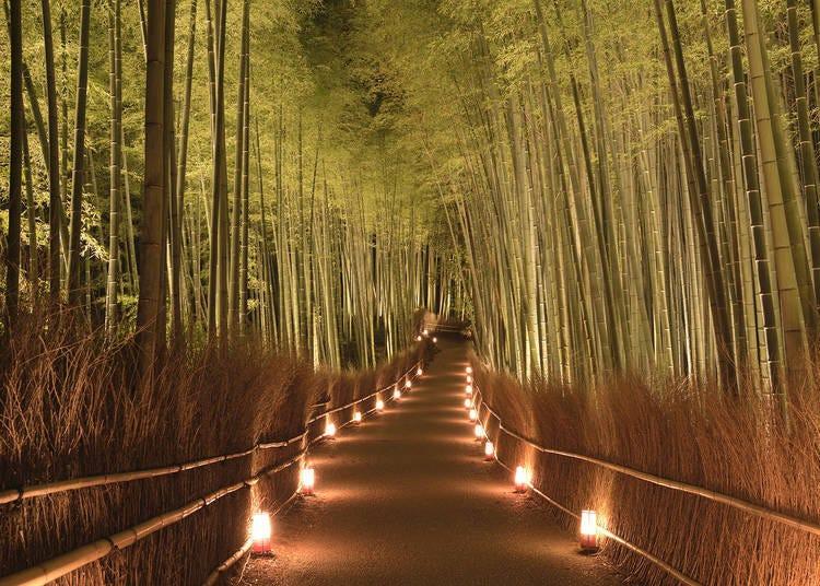 12月開始晚間會在嵐山竹林小徑的周圍打燈