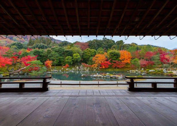 京都・嵐山「天龍寺」の庭園がすごい!観光攻略ガイド
