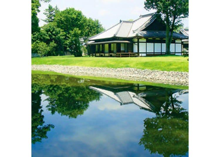 【京都御苑・京都御所】京都市の中心に広がる市民の憩いの公園