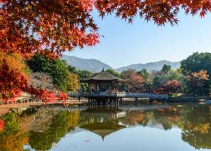 奈良公園周辺のおすすめ観光スポット&グルメ【奈良人気紅葉スポット】