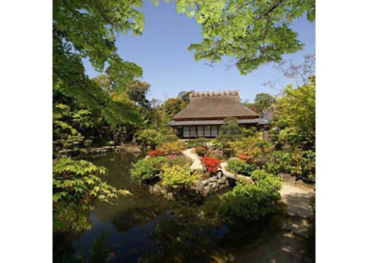 【依水園】時代が異なる2つの庭園が鑑賞できる