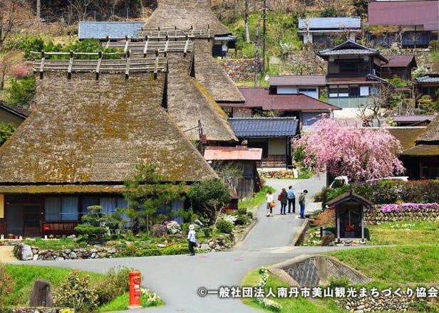 京都市内から日帰り旅行できる観光スポットまとめ