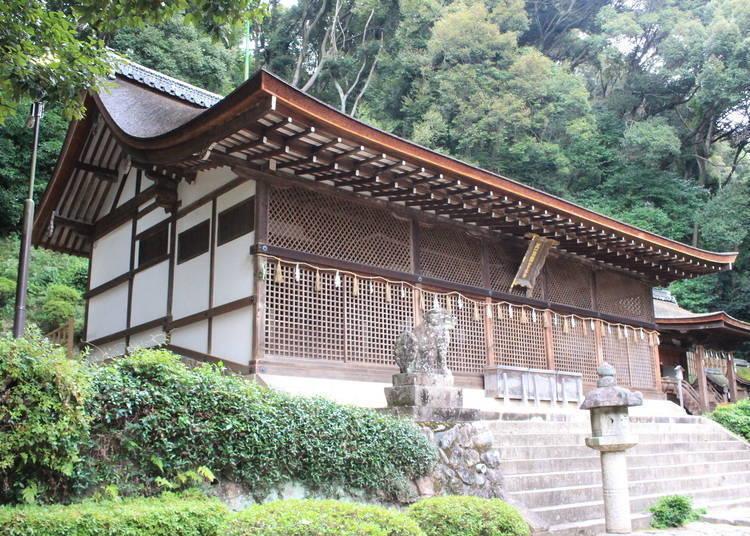宇治一日游行程④「宇治上神社」现存最古老神社建筑与吉祥物
